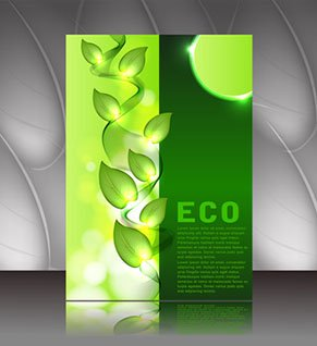 Green flyer with leaves printed on and the word Eco