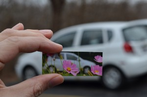 Photograph of white car with flowers